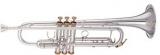 : Труба Bb (Bb trumpet)  3001
