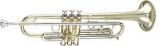 : Труба Bb (Bb trumpet)  590-S