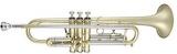 : Труба Bb (Bb trumpet)  590