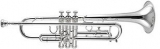 : Труба Bb (Bb trumpet)  700SP