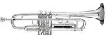: Труба Bb (Bb trumpet)  900S