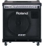 Басовый комбо Roland : D-BASS-115