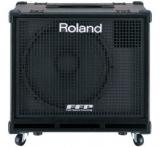 Басовый комбо Roland : D-BASS-115X