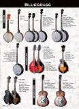 Cort : Банджо с чехлом CB-75 W_BAG