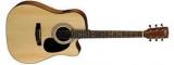 Акустическая гитара Cort : L100C NS
