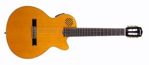 Гитара Ashtone : Электрогитара AE-614