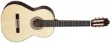 Акустическая гитара Allvaro M 280