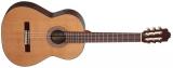 Акустическая гитара Allvaro M 260