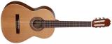 Акустическая гитара Allvaro M 55