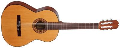 Акустическая гитара Allvaro M 25