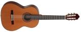 Акустическая гитара AS mod  1025 Cedar