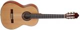 Акустическая гитара AS mod  1023 Spruce