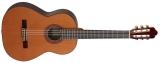 Акустическая гитара AS mod  1020 Cedar