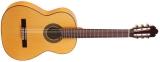 Акустическая гитара AS mod  1018 Spruce