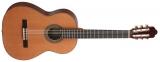 Акустическая гитара AS mod  1015 Cedar