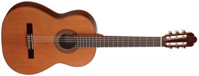 Акустическая гитара AS mod  1010 Cedar