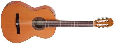 Акустическая гитара AS mod  S-10 Cedar