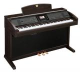 Клавинола : Yamaha CVP-305