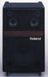 Клавишный комбо Roland : KC-1000