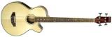 Акустическая гитара FAB-1190EQ BASS