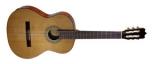 Акустическая гитара FAC-1020