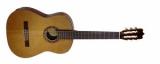 Акустическая гитара FAC-1060
