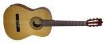 Акустическая гитара FAC-503
