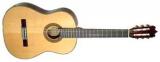 Акустическая гитара FAC-604