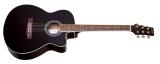 Акустическая гитара w-91c