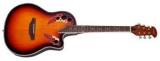 Акустическая гитара W-167 P