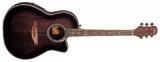Phil Pro : акустическая гитара EMS-373