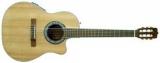 акустическая гитара EMS-373C