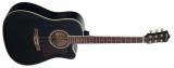 Phill Pro : Акустическая гитара MD001C