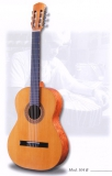Акустическая гитара raimundo : 104B