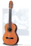 Акустическая гитара raimundo : 112