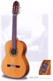 Акустическая гитара raimundo : 120EС