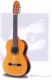 Акустическая гитара raimundo : 123С
