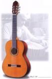 Акустическая гитара raimundo : 130С