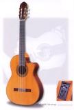 Акустическая гитара raimundo : 660E