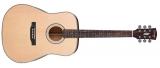 Акустическая гитара Swing : D-50