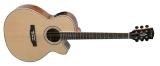 Акустическая гитара Swing : Ds-100nte