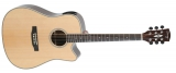 Акустическая гитара Swing : Ds-200te