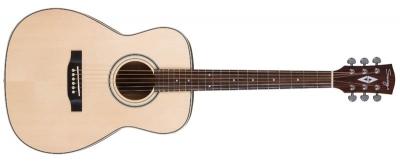 Акустическая гитара Swing : Dt-50