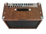 Гитарный комбоусилитель BRONZEWOOD 60 - BW-60